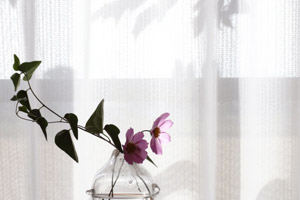 curtain_ph02